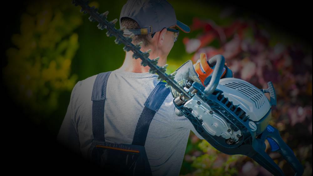 Kosten tuinman zwart per uur of per m2 tuin vergelijk for Schilder inhuren per uur