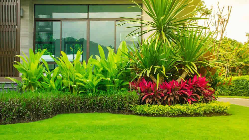 Prijzen en tarieven van tuinman voor tuinaanleg en tuinonderhoud